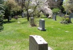 Wallace stevens hartford usa poet grave for 118 westerly terrace hartford ct